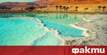 Scientists make a unique discovery in the Dead Sea - news from ak Fakti.bg - Curiosity