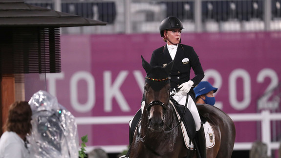 Dressage, event, jumping - what will the participants achieve?