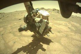 """NASA rover explores the """"garden floor"""" at the bottom of Lake Mars"""