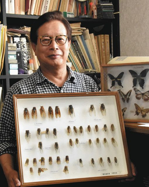Insects Children's Moving Insects Museum Director, Mitsuharu Okuma: Tokyo Shimbon Tokyo Web