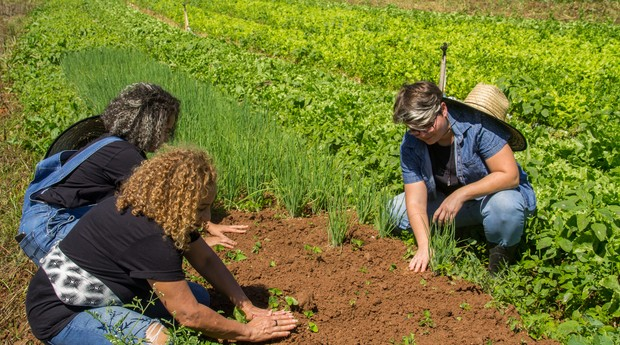 Tudo da Terra: Priscilla Silverio, Aline Rocha, Irene dos Santos working in the garden (Photo: Personal Archive)