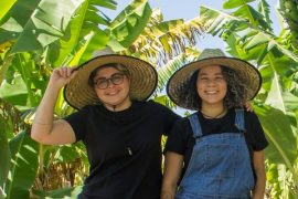 Couples abandon corporate environment to create organic food business - small business big business