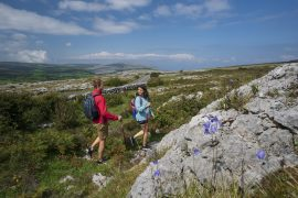 Eco Sustainable Ireland: Best Green Tourism Guidelines