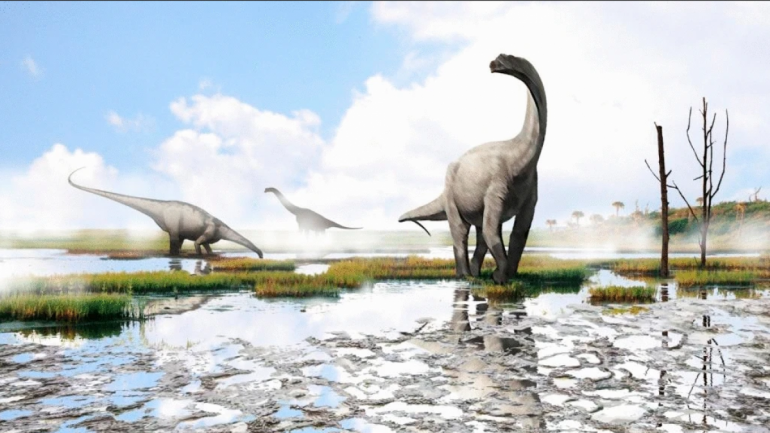 A team of paleontologists find fossil footprints of a dinosaur in Burgos
