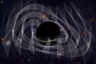 Gravitational waves can reveal black holes using dark clothing