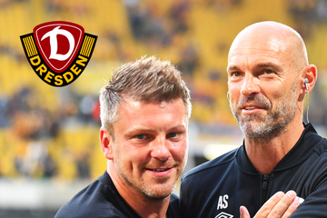 """Dynamo coach Schmidt believes in a fight like the Cup: """"Warm up Paderborn wisely!"""""""