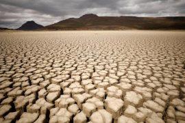Climate change issues threaten central Ukraine - UNIAN