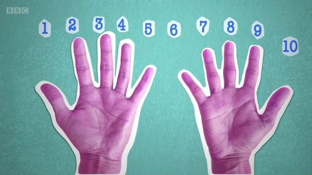 Finger counting, finger counting, math