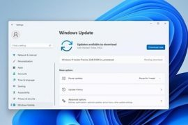 Lazy bag!  List of content and known issues updated in the latest version of Win11!  |  XFastest News