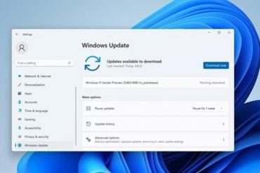 Lazy bag!  List of content and known issues updated in the latest version of Win11!     XFastest News