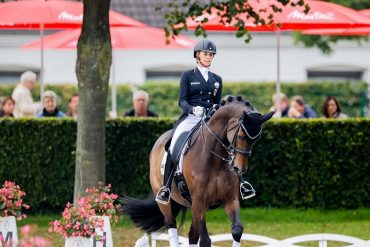 Ahlman II - Von Bredo - Wendell on top of the second horse    Sports