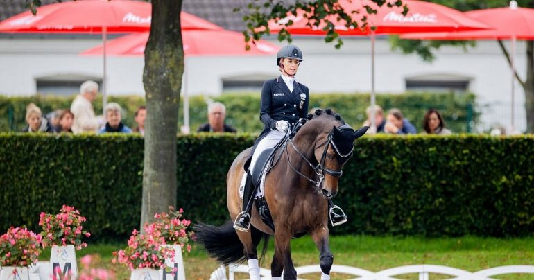 Ahlman II - Von Bredo - Wendell on top of the second horse |  Sports