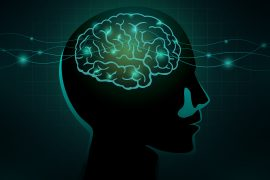 Consciousness as science sees it