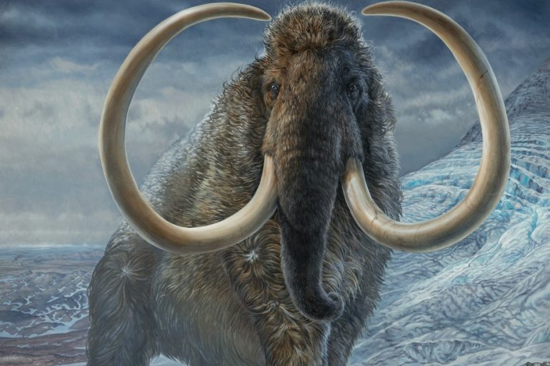 United States    The company aims to recreate woolly mammoths
