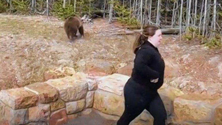 A woman has been sentenced to life in prison for the next encounter with a grizzly bear in Yellowstone Park