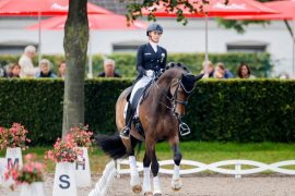 Ahlman II - Von Bredo - Wendell on top of the second horse |  Free Press
