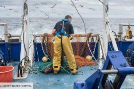 Brexit: UK France's ultimatum for fishing!